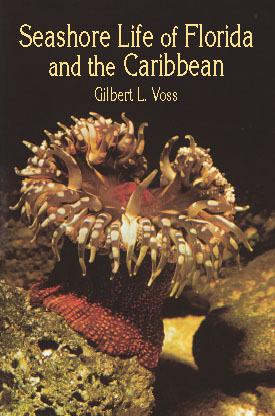 Seashore Life of Florida and the Caribbean Gilbert L. Voss