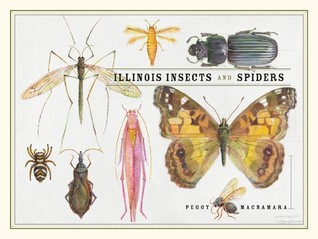 Illinois Insects and Spiders  by  Peggy Macnamara
