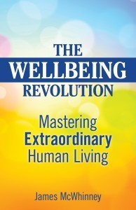 The Wellbeing Revolution  by  James McWhinney