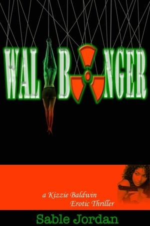 Wallbanger (Kizzie Baldwin Erotic Thriller, #2) Sable Jordan