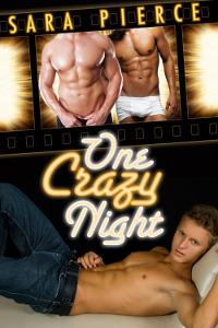 One Crazy Night: A Gay Threesome Sara Pierce