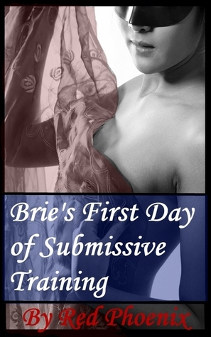 Bries First Day of Submissive Training (Submissive Training Center, #1)  by  Red Phoenix