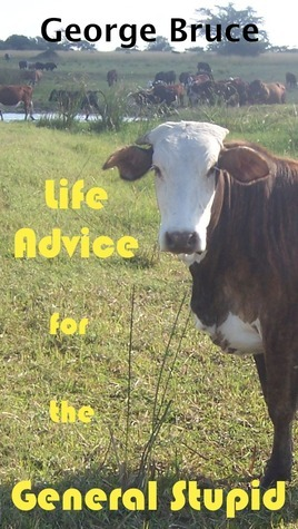 Life Advice for the General Stupid George Bruce