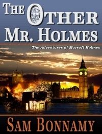 The Other Mr. Holmes  by  Sam Bonnamy