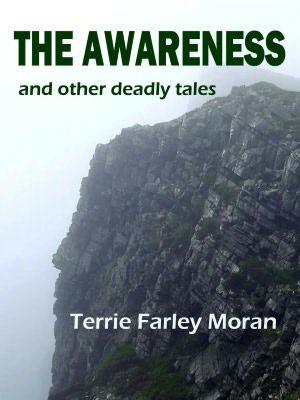 The Awareness  by  Terrie Farley Moran