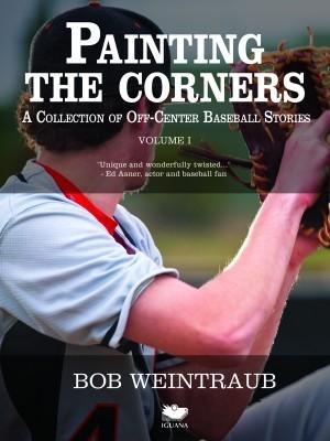 Painting The Corners  by  Bob Weintraub