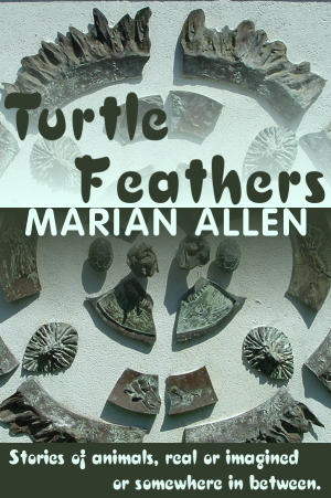 Turtle Feathers  by  Marian Allen