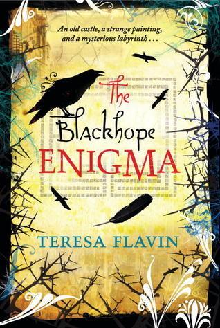 The Blackhope Enigma  (The Blackhope Enigma, #1)  by  Teresa Flavin