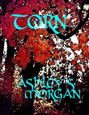 Torn  by  Ashley S. Morgan