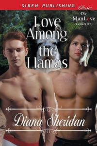 Love Among The Llamas  by  Diana Sheridan