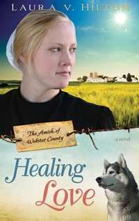 Healing Love (Amish Of Webster County #1)  by  Laura V. Hilton