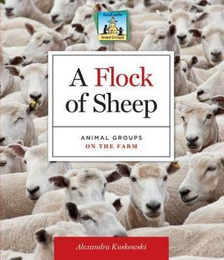A Flock of Sheep: Animal Groups on the Farm  by  Alex Kuskowski
