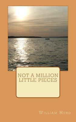 Not a Million Little Pieces  by  William Hurd