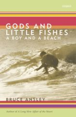 Gods and Little Fishes, a boy and a beach.  by  Bruce Ansley