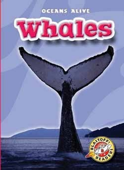 Whales  by  Ann Herriges
