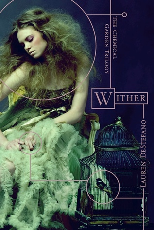 The Book Boyfriends Collection: Wither, Wait For You, The Edge of Never  by  Lauren DeStefano