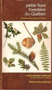 Petite flore forestière du Québec  by  Éditions France-Amérique