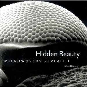 Hidden Beauty: Microworlds Revealed  by  France Bourely