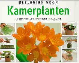 Beeldgids voor Kamerplanten  by  David Squire