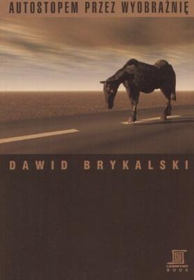 Autostopem przez wyobraźnię Dawid Brykalski