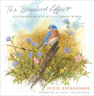 The Bluebird Effect: Uncommon Bonds with Common Birds  by  Julie Zickefoose