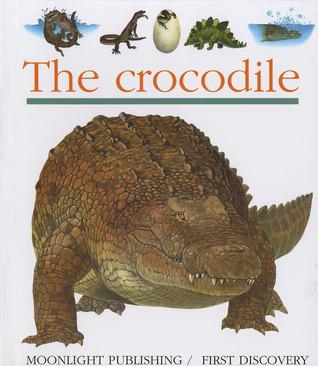 The Crocodile  by  Sylvaine Peyrols