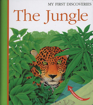 The Jungle  by  René Mettler
