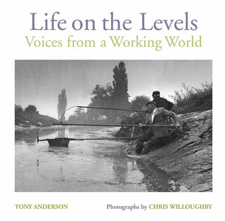 Life on the Levels: Voices from the Working World  by  Tony Anderson