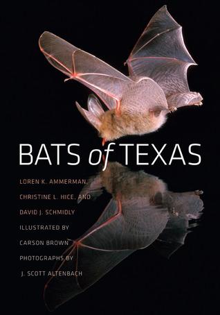 Bats of Texas Loren K. Ammerman