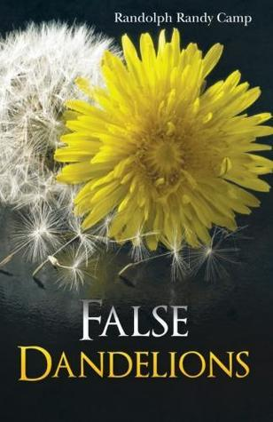 False Dandelions  by  Randolph Randy Camp