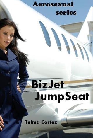 Biz Jet JumpSeat (Aerosexual Series)  by  Adele Simms
