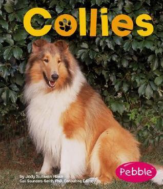 Collies Jody Sullivan Rake