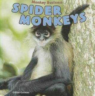 Spider Monkeys Gillian Gosman