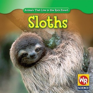 Sloths  by  Julie Guidone
