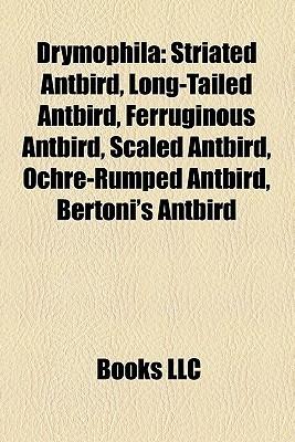 Drymophila: Striated Antbird, Long-tailed Antbird, Ferruginous Antbird, Scaled Antbird, Ochre-rumped Antbird, Bertonis Antbird Books LLC