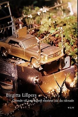 Glömde väl inte ljusets element när du räknade  by  Birgitta Lillpers