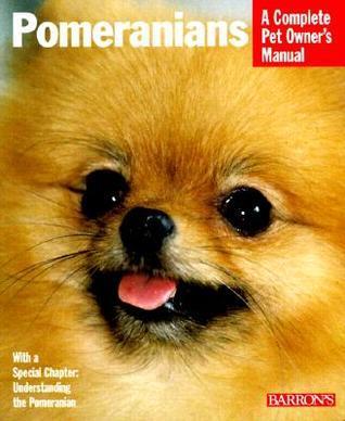 Pomeranians Joe Stahlkuppe