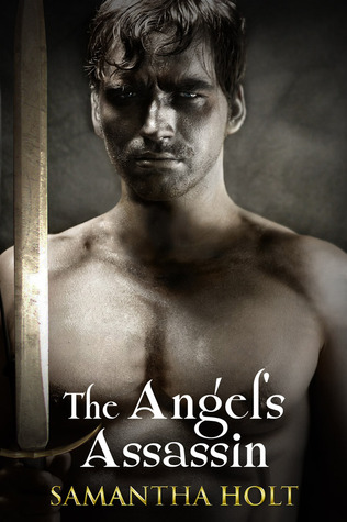 The Angels Assassin  by  Samantha Holt