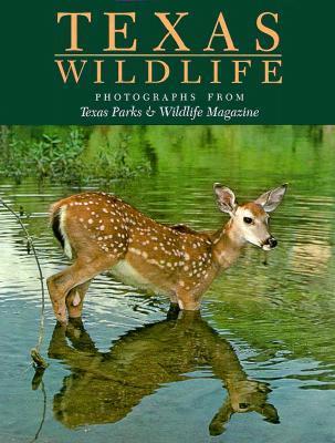 Texas Wildlife: Photographs from Texas Parks & Wildlife Magazine  by  David Baxter