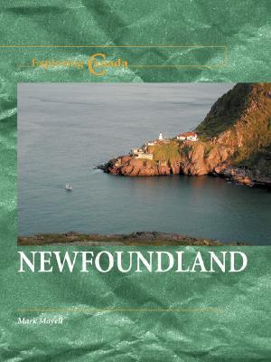 Newfoundland  by  Mark Mayell