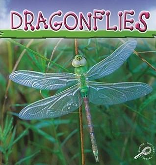 Dragonflies Jason Cooper