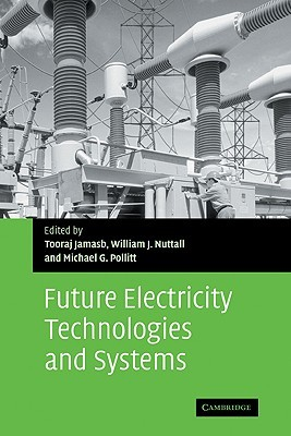 The Future of Electricity Demand: Customers, Citizens and Loads  by  Tooraj Jamasb