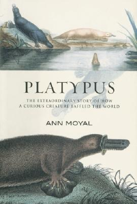 Scientists in Nineteenth Century Australia  by  Ann Moyal