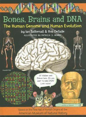 Bones, Brains and DNA: The Human Genome and Human Evolution Ian Tattersall