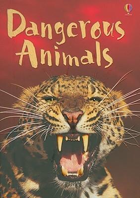 Dangerous Animals Rebecca Gilpin