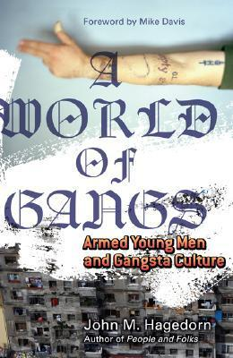 A World of Gangs: Armed Young Men and Gangsta Culture John M. Hagedorn