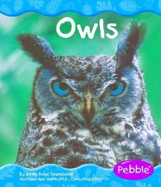Owls  by  Emily Rose Townsend
