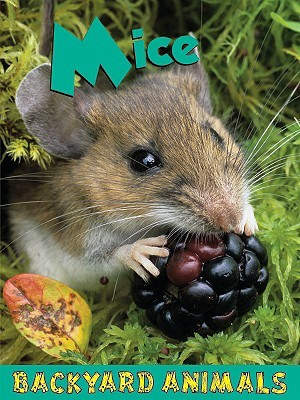 Mice  by  Leia Tait