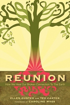 Reunion: How We Heal Our Broken Connection to the Earth  by  Ellen Gunter