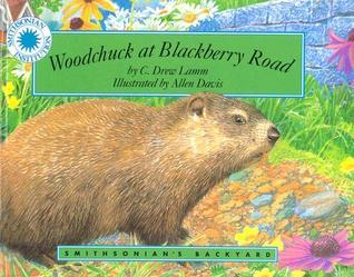 Woodchuck At Blackberry Road C. Drew Lamm